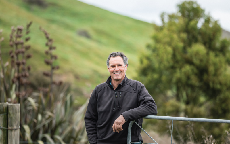 Fonterra opens farms around New Zealand, invites kiwis to come and visit