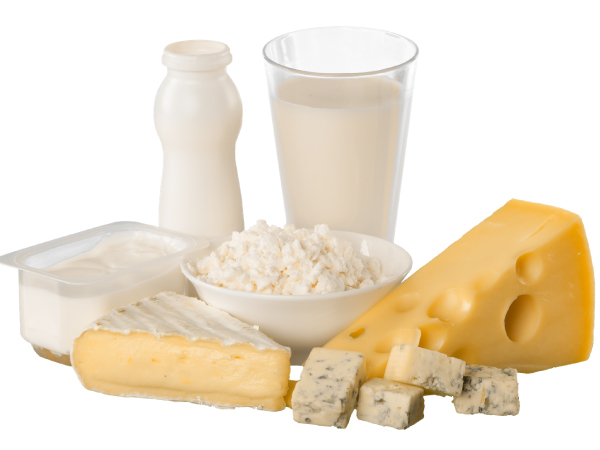 Dairy products - cheese, milk and yoghurt