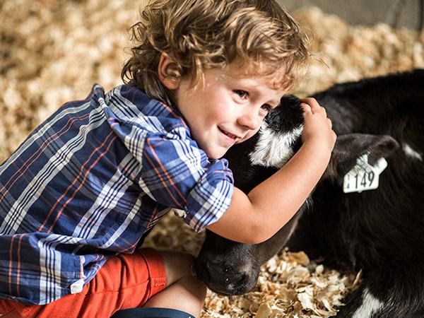 Global Dairy Update