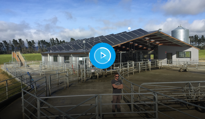 Shining a light on farming with Solar